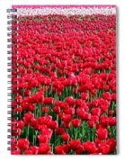 Tulips By The Million Spiral Notebook