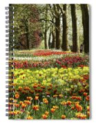 Tulips Everywhere 1 Spiral Notebook