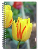 Tulips Garden Art Prints Yellow Red Tulip Flowers Baslee Troutman Spiral Notebook