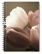 Tulips Glow Spiral Notebook