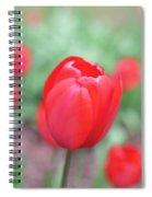 Tulips In Spring 4 Spiral Notebook