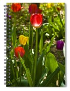 Tulips In The Garden Spiral Notebook