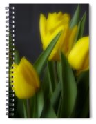 Tulips In The Kitchen Spiral Notebook