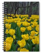 Tulips In The Woods Spiral Notebook