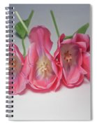Tulips On White Spiral Notebook