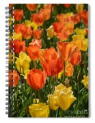 Tulips Yellow And Tangerine Spiral Notebook