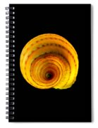 Tun Shell Spiral Notebook