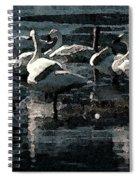 Tundra Swans Spiral Notebook