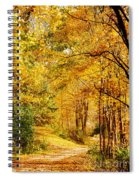 Tunnel Of Gold Spiral Notebook