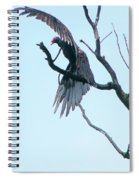 Turkey Vulture Drying Wings After Rain     Indiana Summer Spiral Notebook