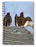 Turkey Vultures On Roof Spiral Notebook