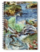 Turkish Woman By A Stream Spiral Notebook