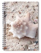 Turks And Caicos Shell Spiral Notebook