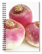 Turnips Spiral Notebook