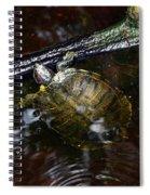 Turtle And The Stick Spiral Notebook