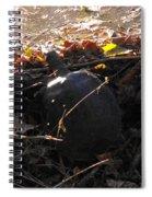 Turtle At Deer Creek Spiral Notebook
