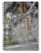 Turtle Eye Reflection Spiral Notebook