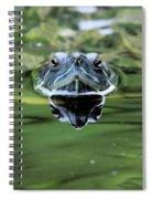 Turtle Head Spiral Notebook