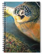 Turtle Run Spiral Notebook