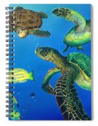 Turtle Towne Spiral Notebook