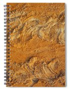Turtle Tracks Spiral Notebook