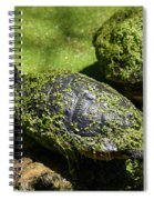 Turtle Yoga Spiral Notebook
