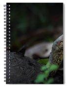 Turtle's Neck 1 Spiral Notebook
