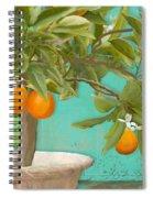 Tuscan Orange Topiary - Damask Pattern 3 Spiral Notebook