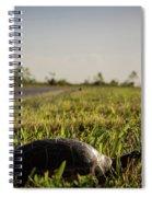 Tutrle Spiral Notebook