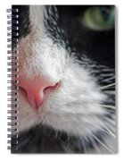 Tuxedo Cat Whiskers And Pink Nose Spiral Notebook