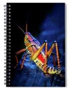 Twilight Grasshopper Spiral Notebook