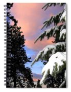 Twilight Hour Spiral Notebook
