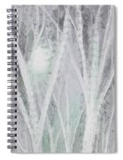 Twilight In Gray I Spiral Notebook