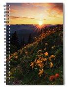 Twilight Of The Balsamroot Spiral Notebook