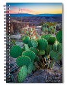 Twilight Prickly Pear Spiral Notebook