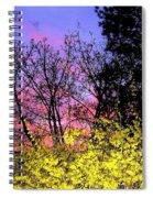 Twilight Time Spiral Notebook