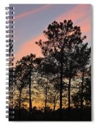 Twilight Tree Silhouettes Spiral Notebook