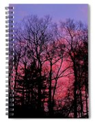 Twilight Trees Spiral Notebook