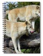 Twin Blond Wolves Spiral Notebook