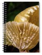 Twin Cantharellus Spiral Notebook