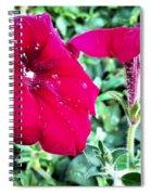 Twin Flower Power Spiral Notebook
