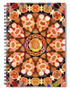 Twin Spiral Notebook
