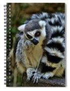 Twin Lemurs Spiral Notebook