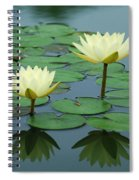 Twin Reflections Spiral Notebook