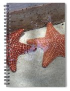 Twin Stars Spiral Notebook