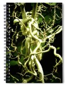 Twining Willow Spiral Notebook