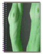 Twins Spiral Notebook