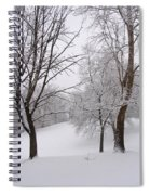 Twins Trees In The Snow Spiral Notebook