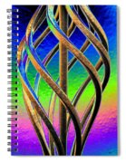 Twist And Shout 2 Spiral Notebook