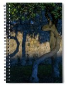 Twisted Early Morning Shadows Spiral Notebook